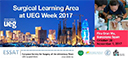 ESSAT - Surgical Learning Area at UEG Week 2017